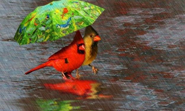Претпладне претежно сончево  попладне со локални врнежи  Врнежи и за продожениот викенд
